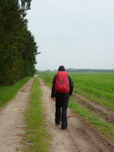 Langdistancevandring